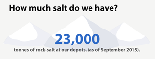 How much salt do we have?